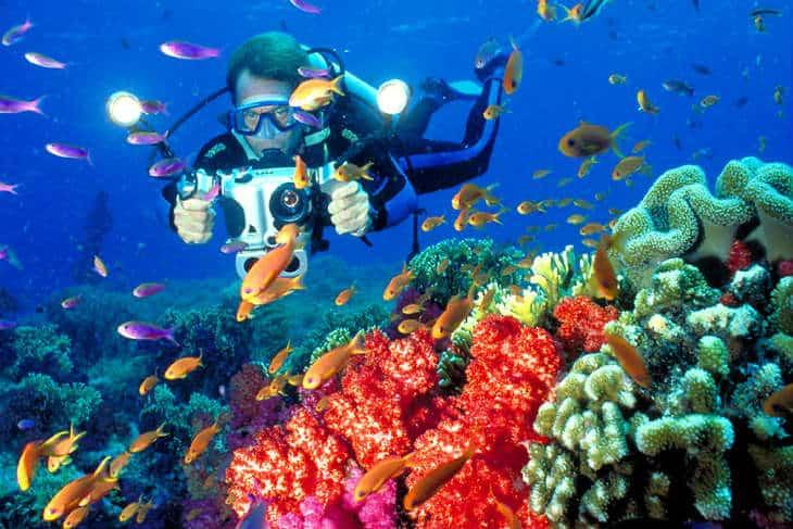 Dykning Fiji