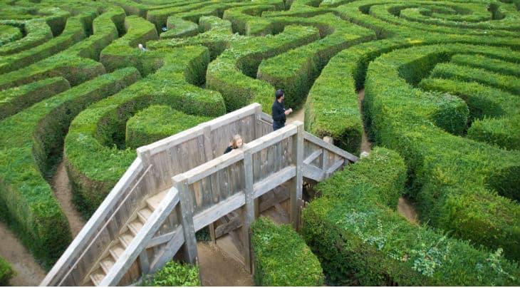 Longleat hedge