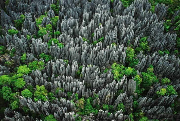 Tsingy stenskog
