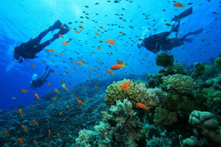 scuba-diving jamaica
