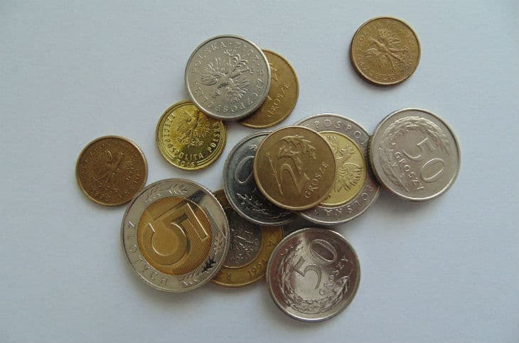 Polens Valuta – Allt om Polska Zloty inför resan