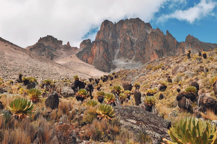 Highest Mountains in Africa (meters above the sea